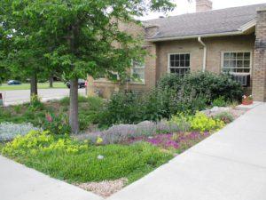 plant-select-garden-harvard-gulch-park-denver-co-6-11-14